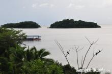 diario isla san fernando: